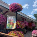 A+ Garden Center exterior with hanging baskets