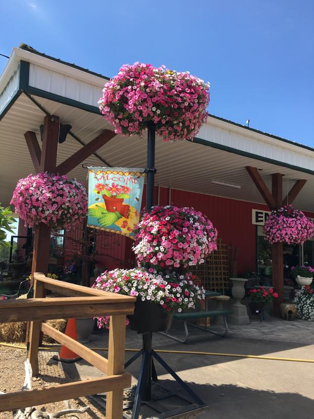 A+ Garden Center exterior with pink hanging baskets